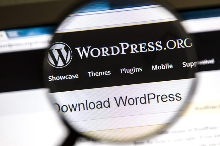 wordpress websiste design hampshire